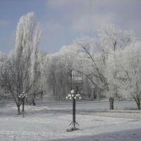 Територія лікарні взимку, Дунаевцы