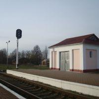 Станция Изяслав. Кладовая инвентаря, Изяслав