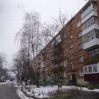 вулиця В.Стуса, Красилов