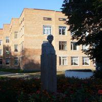 памятник вале котику в красилове, Красилов