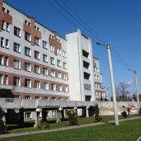 Поліклініка, Красилов