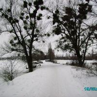 Дорога на Завовк взимку., Летичев