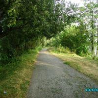 Дорога на Летичев со стороны Завовка, Летичев