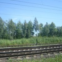 Железнодорожная линия Шепетовка - Бердичев. Перегон Блыдни - Понинка, Полонное
