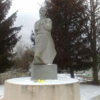 Леся Українка, Полонное