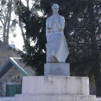 Пам'ятник Лісі Українці, Полонное