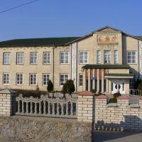 Гімназія (Школа №1), Полонное