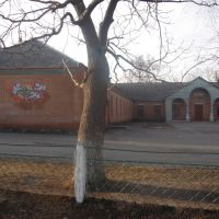 школа в Полонном, Полонное