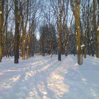 Зимний парк., Староконстантинов