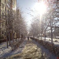 Зима..., Нетешин