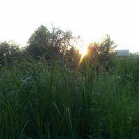 Сутінки над Горинню, Нетешин
