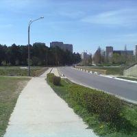 Integral Bridge, Нетешин