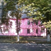 Домики на улице Дружбы, Ватутино