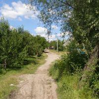 Ломоносова-Гончарна, Городище