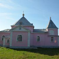 Церковь Св. Дмитрия, с.Зализнячка (1773 г) / Church of St. Demetrius, v.Zaliznyachka (1773), Ерки