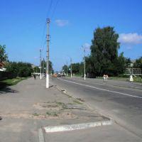 Центр (вест саид), Жашков