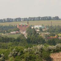 Вид на больницу(с карьера), Зараевск