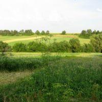 Вербівка - моя рідна земля, Зараевск