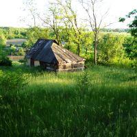 Старый дом, Зараевск