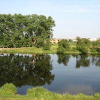 Інтернатський ставок, Звенигородка
