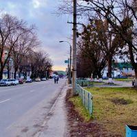 Прос.Шевченко возле библиотеки., Звенигородка
