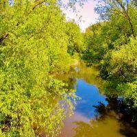 09.05.2008  9:59  Река Гнилой Тикич., Звенигородка