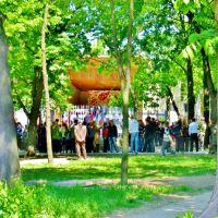 09.05.2008  11:03 На сцене исполняются народные песни и танцы., Звенигородка