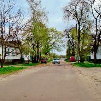24.04.2012 15:32  Улица Энгельса перед пересечением с улицей Дружбы., Звенигородка