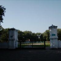 Стадіон, Золотоноша