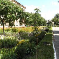 Школа №2, Золотоноша