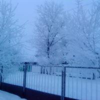 Зима! 26 января 2011г, Каменка