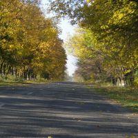 Осень, Катеринополь