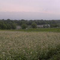 Вид на Кинашковку, Маньковка