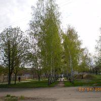 Парк за центром зайнятості, Тальное
