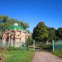 Cemetery, Березна