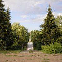 Обеліск слави, Бобровица