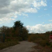 Переезд через железку на лесопилку (слева), Бобровица