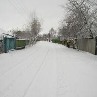Зимняя дорога, Борзна