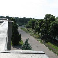 Борзна. вид с крыши, Борзна