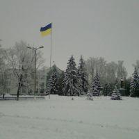 Зима площадь, Борзна