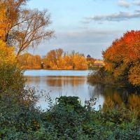 Река осенью, Борзна