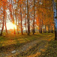 Осенний закат, Борзна
