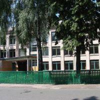 School, Вертиевка