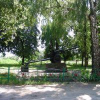 Memorial, Вертиевка
