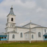Вертиевка. Николаевская церковь. 1887 г. / Vertievka. Nicholas Church. 1887, Вертиевка