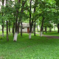 Parco internat, Городня