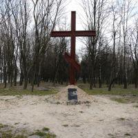 Памятник жертв голодомора 1932-1933гг, Ичня