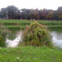 Вид на парк, Ичня
