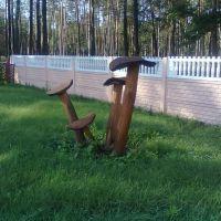 Поделки из дерева, Корюковка