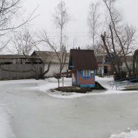 Замерзлий ставок в зоопарку, Мена